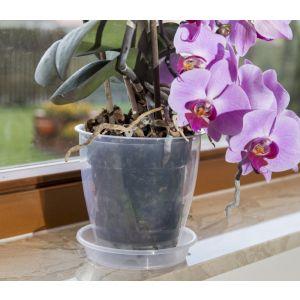 Ghiveci orhidee cu farfurie transparent 133 mm Harplast