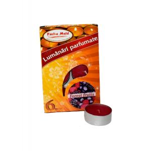 Lumanari parfumate 6 buc/set  FOREST FRUITS